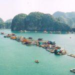9 điều nên làm khi du lịch đảo Cát Bà