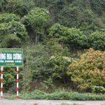 Khám phá động Đá Hoa – du lịch Cát Bà