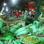 Du lịch Cát Bà mua hải sản ở đâu?