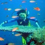 8 trải nghiệm thú vị ở đảo ngọc Cát Bà