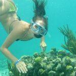 Lặn ngắm san hô trong tour du lịch Cát Bà