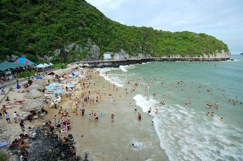du lịch Cát Bà hè 2015