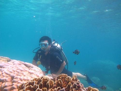 Khám phá biển đảo trong lành Cát Bà